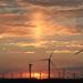 美国海上风电踯躅前行