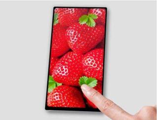 苹果誓死保卫齐刘海,挖完OLED挖LCD,国产坑屏标准品即将放量
