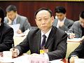 靳保芳:竞价机制倒逼光伏产业升级