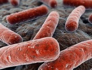 盘点近年来结核病领域的研究成果