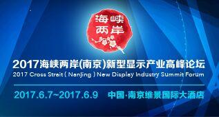 2017海峡两岸(南京)新型显示产业高峰论坛