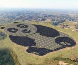 中国欲建100座熊猫形太阳能发电厂