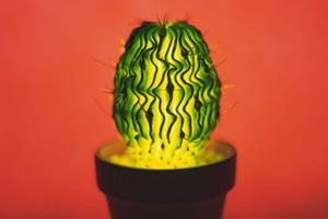 解读植物光生理与LED在植物照明优势