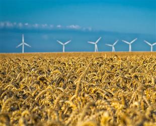 两部委:推动清洁低碳能源优先上网