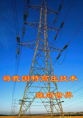 刘振亚:将我国特高压技术推向世界