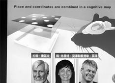 聚焦2014诺贝尔奖:蓝光LED照亮世界 发现大脑GPS