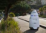 """""""不好惹""""的机器人保安 功能完善时薪便宜"""