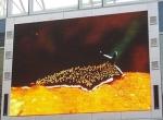 详解LED电子显示屏的主要技术问题