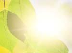 用二氧化钛制成新薄膜镀层利于阳光转化成零排放燃料