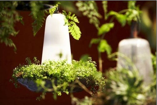 难以置信!可种植花草的LED太阳能光合吊灯