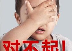 """专家看小米台湾""""虚报门"""": 雷军难为巧妇"""