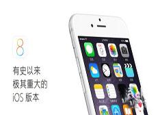国人为何卖肾买苹果?iPhone 6/Plus深度对比评测大揭秘
