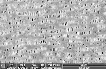 南洋科技:锂电池隔膜生产线完成安装 上半年有望投试