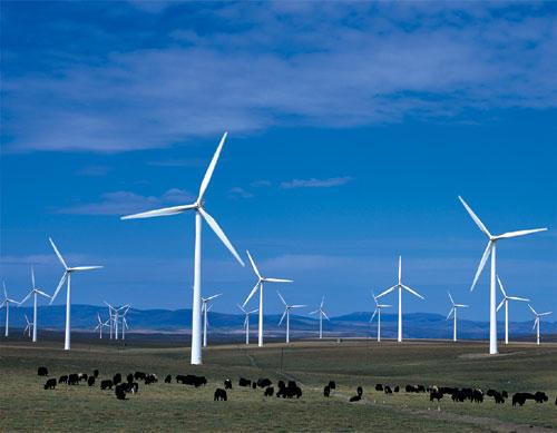 """""""十二五""""并网风电装机达10885万千瓦"""