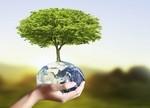 """IEA数据:可再生能源是否可""""再生""""?"""