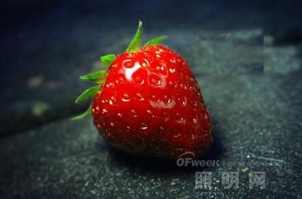 不同LED光源对草莓的影响有哪些?
