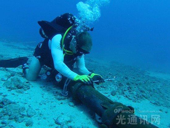 MainOne呼吁拟定海底电缆保护法案  获多家海缆运营商支持