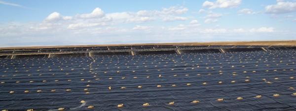 锂电产业需求激增 碳酸锂价格现井喷