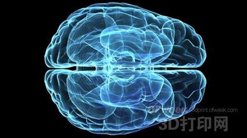 生物医学新突破:科学家首次3D打印出脑组织