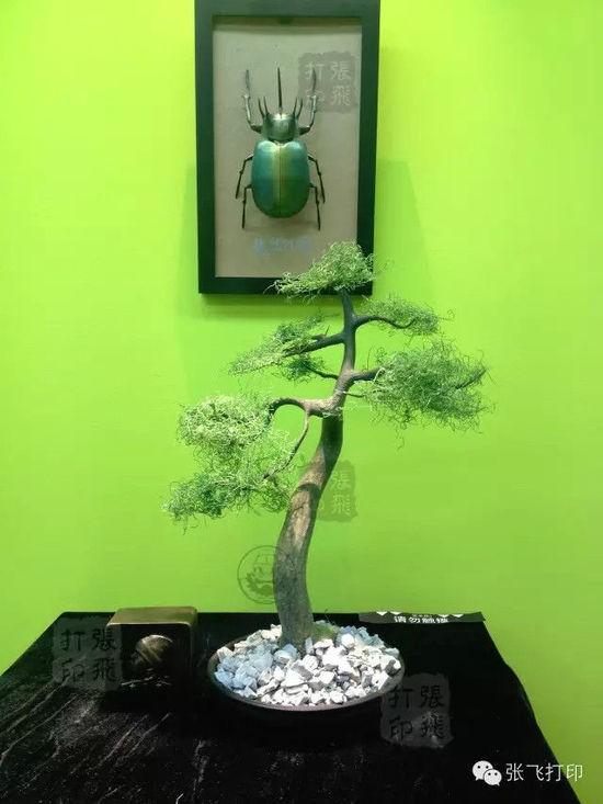 3D打印盆景:高新科技体现中国传统文化