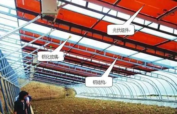 頂棚:隱框單坡采光頂結構;主鋼結構:鋼桁架