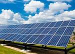 """【惊奇】""""菠菜""""居然能让太阳能电池板效率倍增?"""