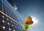 深究:光伏业限电困境出路何在?