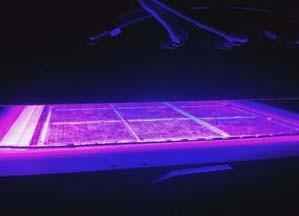 寿命长、无污染的UV-LED固化系统的未来应用及市场趋势分析