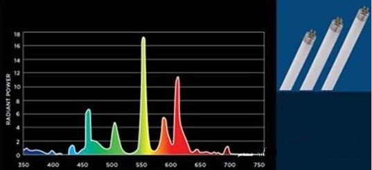 白炽灯/卤素灯/荧光灯发光原理和光谱分析