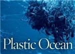 让海洋窒息:中国占全球海洋塑料垃圾量三分之一