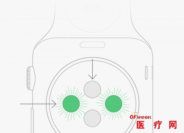苹果Apple Watch心率传感器大揭秘