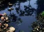 """【聚焦】""""水十条""""对郑州水污染防治成效到底有多少?"""