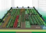 LED照明开启植物工厂创意空间:揭开英国地下农场神秘面纱(图)