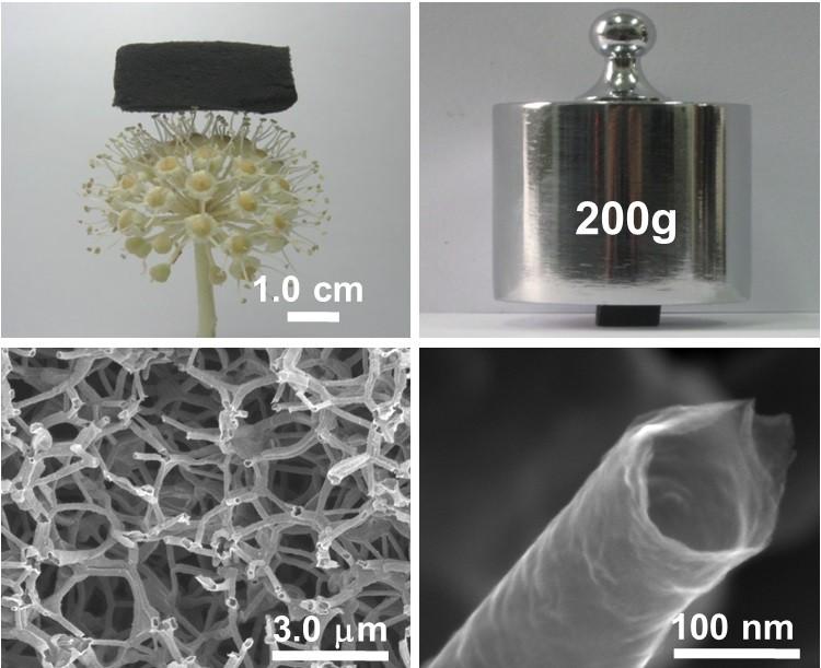 三维石墨烯管宏观和微观形貌