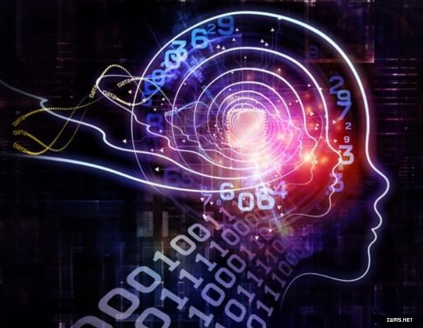 人工智能人类大脑