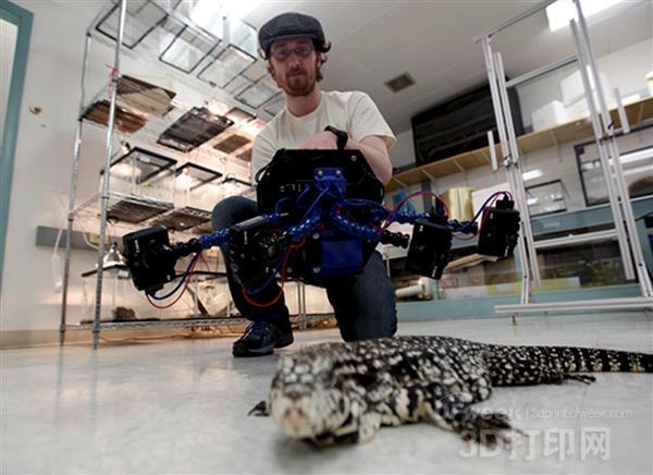 Beastcam:可以为活鲨鱼建模的高速3D扫描系统