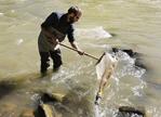 美国再现铅污染丑闻 污水处理厂被指伪造水质检测报告