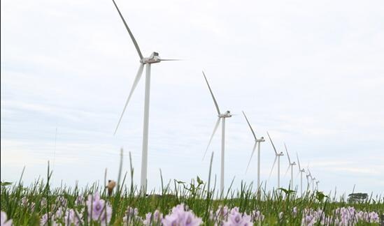 维斯塔斯V112-3.0 MW风机在巴西风电场发生机舱着火事故
