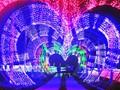 江夏灯光节1800万支LED创意灯点亮600亩花海