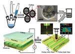 研究3D打印电极的磷酸铁锰锂电池材料新进展