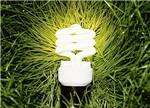 可再生能源:差价补贴变定额补贴加上绿色证书模式