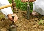 欧盟开发出一款廉价的土壤污染探测传感器
