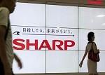 夏普将扭亏为盈 股价大涨10%
