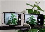 iPhone 7和iPhone 6s拍照对比评测:隔代升级更划算?
