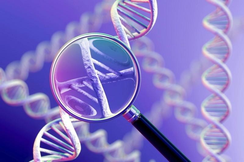 基因测序相关政策东风频吹:我国处于初期布局阶段