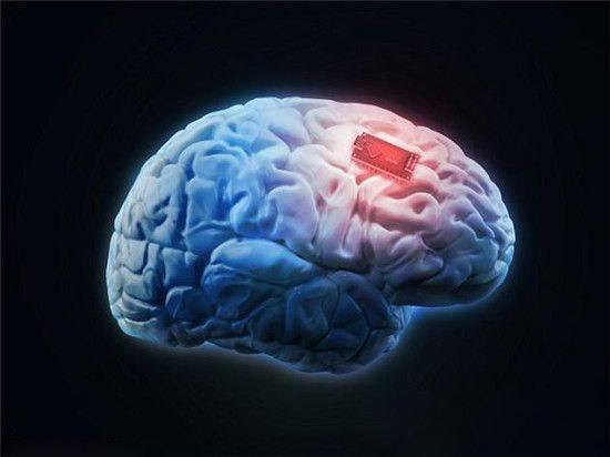 科学家研发大脑芯片 让人类拥有超人的记忆力