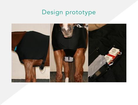 这是一款专门为马设计的可穿戴设备