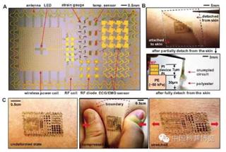 电子皮肤:贴在你手腕上的可穿戴设备