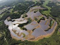 NRE,施耐德,日本光伏项目