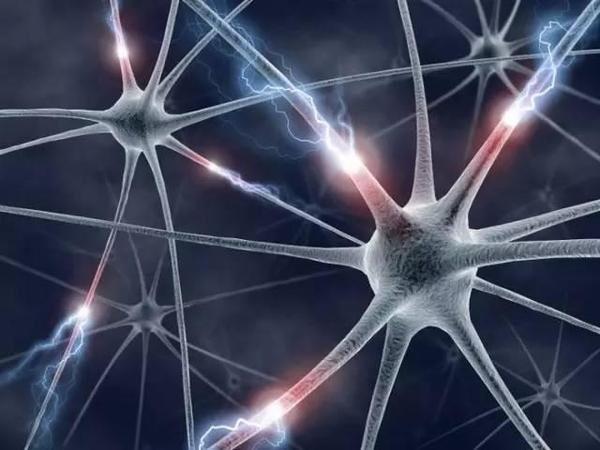 发光传感器,脑细胞,神经元